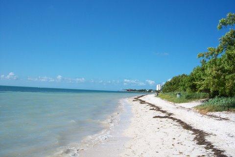 Coco Plum Beach Marathon FL Keys